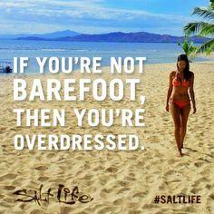saltlife