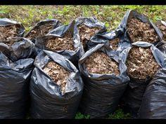 How to Make Drunken Compost in 14 days