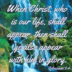 COLOSSIANS    3:4