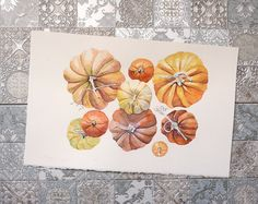 Pumpkins watercolor Original watercolor by IllustrationLili