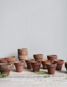 Love terra cotta pots