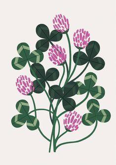 Sarah Abbott is an artist and illustrator from Sheffield (UK). She graduated silkscreen art in 2009 and has been on various travillé Simple Illustration, Illustration Design Graphique, Illustration Botanique, Illustration Blume, Floral Illustrations, Botanical Illustration, Flower Illustration Pattern, Silkscreen, Botanical Art