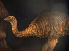 Are You Familiar With These 10 Famous Prehistoric Birds?: Aepyornis (2 Million Years Ago)