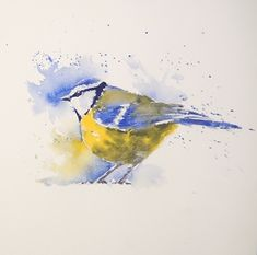 Join Joanne as she paints a Blue Tit using just 3 colours in her trademark loose and quick style.