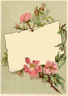 Vintage Rose Frame Images - The Graphics Fairy Vintage Abbildungen, Papel Vintage, Vintage Rosen, Vintage Frames, Vintage Cards, Vintage Paper, Vintage Prints, Vintage Floral, Vintage Labels
