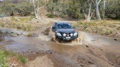 Hunty making a splash of it.