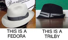 8c42d2c83f1bb That s Not A Fedora (And Stop Wearing It. Trilby HatFedora HatCaps HatsMen s  ...