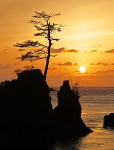 ~~Depoe Bay, Oregon ~ Pacific Ocean golden sunset silhouette by Adam Grim~~