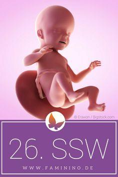 faszinierende animation so entwickelt sich dein baby im bauch. Black Bedroom Furniture Sets. Home Design Ideas