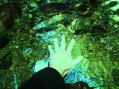 2016年1月 セラピストの左手/熊野・七珍宝の滝【男性セラピスト|東京新宿たけそら】