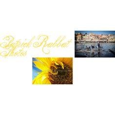 Patrick Rabbat Photos by gail-brigham on Polyvore featuring interior, interiors, interior design, home, home decor, interior decorating and weekendwonder