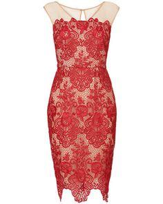 Phase Eight Anais Lace Dress