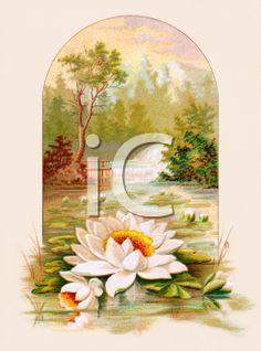 A Beautiful Victorian Landscape Illustration
