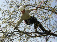"""@TRAPP der Baumpfleger  always """"Silky on board"""" ;)"""