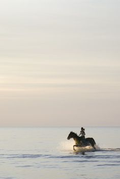 Girl Riding Horse At The Seaside - OGQ Backgrounds HD