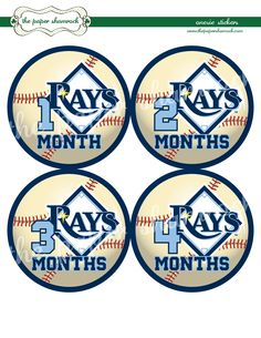 Tampa Bay Rays Onesie Stickers