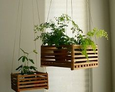cassette di legno per piante - Cerca con Google