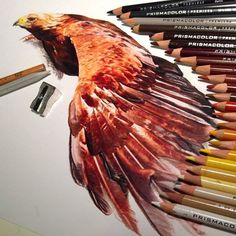 Creative Color Pencil art by Karla Mialynne