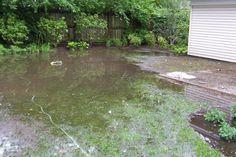 Flooding-of-rear-yard.jpg (575×384)