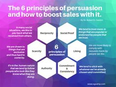 Social Proof, Sale Store, Entrepreneurship, Student, How To Get