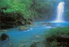 Costa Rica. I want to swim with Spinner dolphins and sleep in the rainforest.