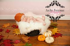 Photo Ideas and love the UNISEX Chunky Newborn Beanie in PUMPKIN with Natural Wood Button. $16.00, via Etsy.