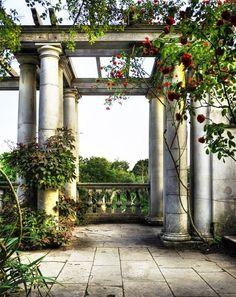 Ivy in the garden summer vintage outdoors nature flowers garden beauty plants ivy arbor columns pillars