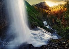 Morning Shower by kilianschoenberger. Please Like http://fb.me/go4photos and Follow @go4fotos Thank You. :-)