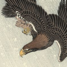 Flying Eagle, 1933 by Ohara Shoson (1877 - 1945)