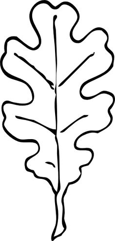 fall leaf template oak leaf outline clip art vector clip art rh pinterest com oak leaf clipart black and white oak leaf clipart black and white