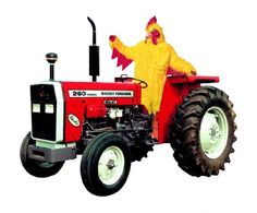 chicken tractors - Google Search