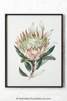 Comes as instant downloads and as a set of 2, these protea flowers artwork is supplied as high resolution Pdf and Jpg formats #proteas #ProteaFlower #botanical #botanicalart #botanicalbeauty #plants #plantlife #etsydecor