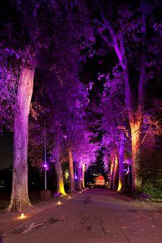 Iluminación RGB Led para exteriores, durabilidad y efecto , Sinapsis controls