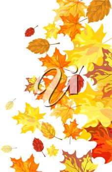 iCLIPART - Clip Art Illustration of an Autumn Maple Leaves Background.