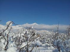 Monte Rocciamelone (3538 mt.) da Gravere (To) - Italy