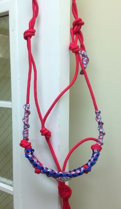 Red, white, and blue halter with bling concho and matching lead. $55