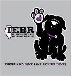 Illinois English Bulldog Rescue - Decatur, Illinois Facebook page at https://www.facebook.com/IllinoisEnglishBulldogRescue