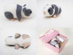 Custom Order Panda Guinea Pig