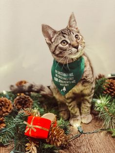 Oh Christmas tree oh Christmas tree cat bandana is perfect for your cats we all know cats are curious creatures and love to get into everything. So o decide to put a funny twist onto a holiday classic. This bandana is hand Swen and made out of 100% cotten.