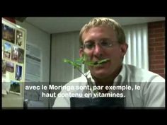 Documentaire sur L'Arbre Moringa  (Discovery Channel)  http://youtu.be/ZvcsRRKlRgU   www.MoringaMalt.Biz moringamalt@gmail.com www.facebook.com/zijafredericmalt www.moringamalt.myzija.com
