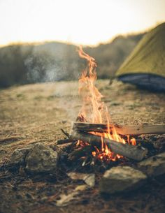 Dreaming of late-night campouts.