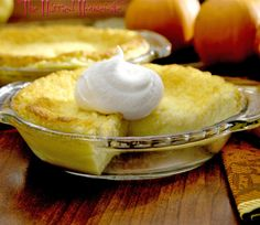 Mini Coconut Custard Pies is the perfect recipe when it comes to easy pie recipes. Happy National Pie Day!
