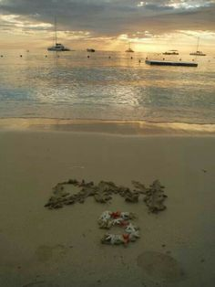 Sandals Resort Negril, Jamaica. we did something different for everyday that we were there on our honeymoon.