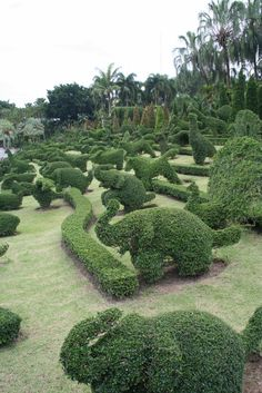 Green Animals Topiary Garden                                                                                                                                                                                 More