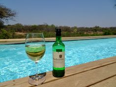 Afternoon drinks and private plunge pool overlooking the bush (air temperature +40C), Kapama Karula