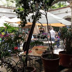 Those indoor places with Bazar restaurant and of course live music are what mexico makes the best. we are here in the Bazar de Los Sabados in San Angel ! #restaurant #GregWasThere #food #MexicoDF #CDMX #Mexico #MexicoCity #market