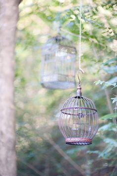 bird cage prop