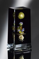 Glass artist Paul Stankard creates small worlds in glass paperweights.