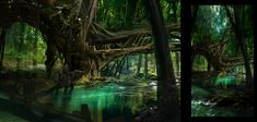 jungle images - Google Search