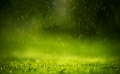 Hq japan nature rain fall Wallpapers HDWallpapers